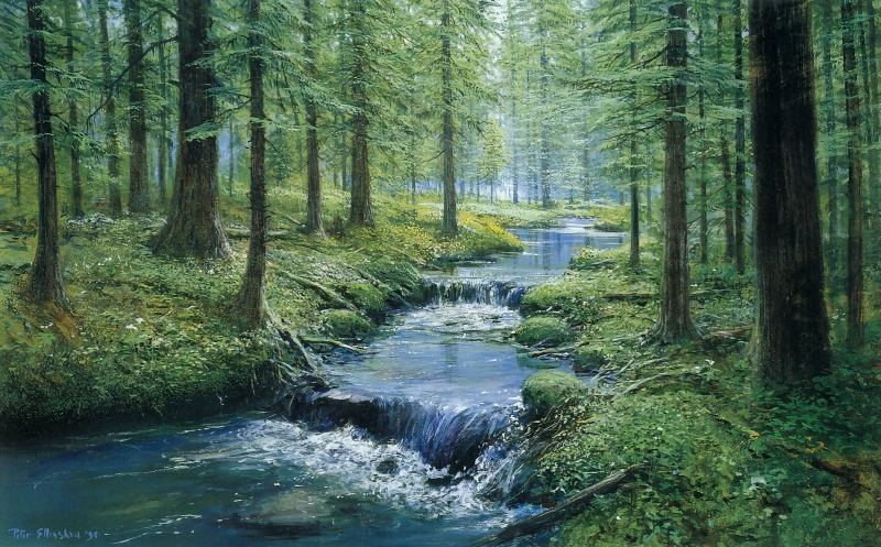 ForestStream-1995