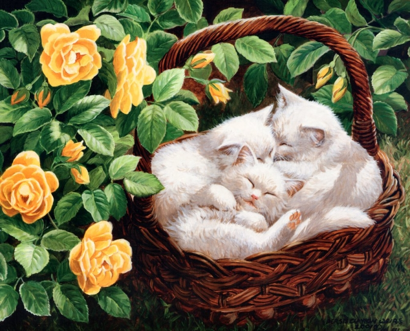 Persis Clayton Weirs ~ Bed of Roses De