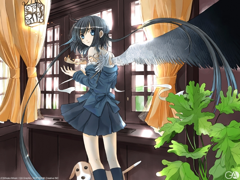 Konachan.com - 17210 - dog gagraphic magic mikaki_mikako wings 112