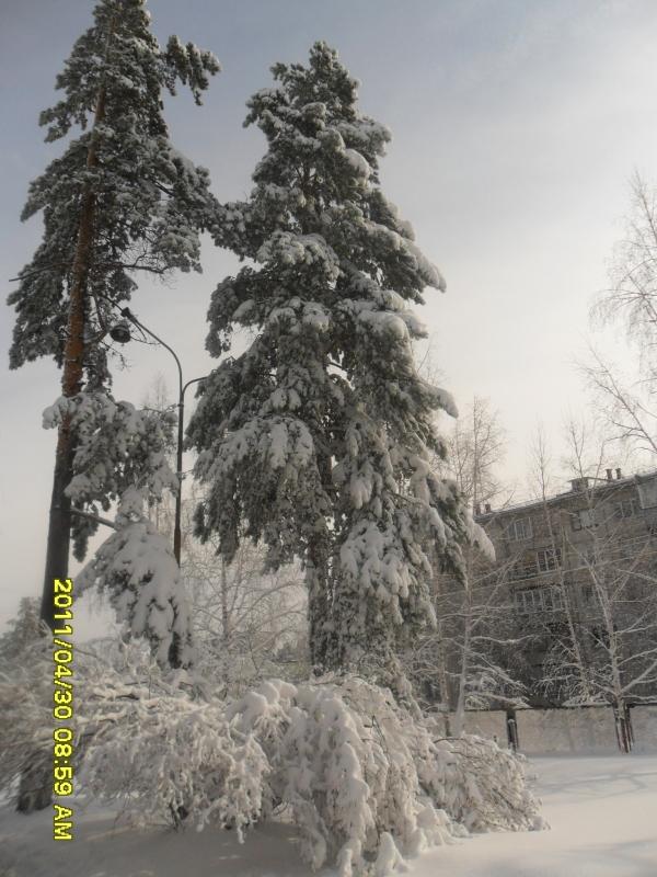 Знакомства Зима И Зиминский Район