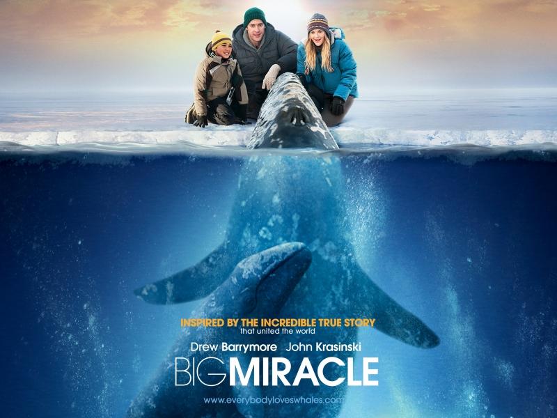 Трейлер к фильму «Все любят китов»