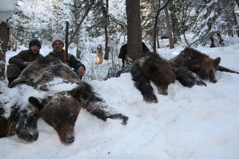 охота и рыбалка в сибири и тайги
