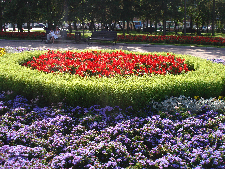 Клумбы в виде цветка фото