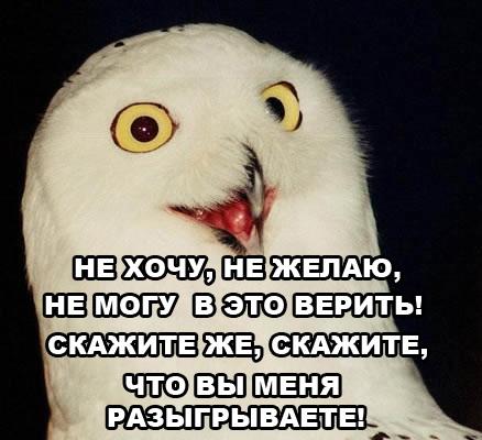 [Изображение: 129096829727.jpg]