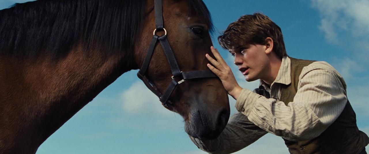 Конь и его мальчик