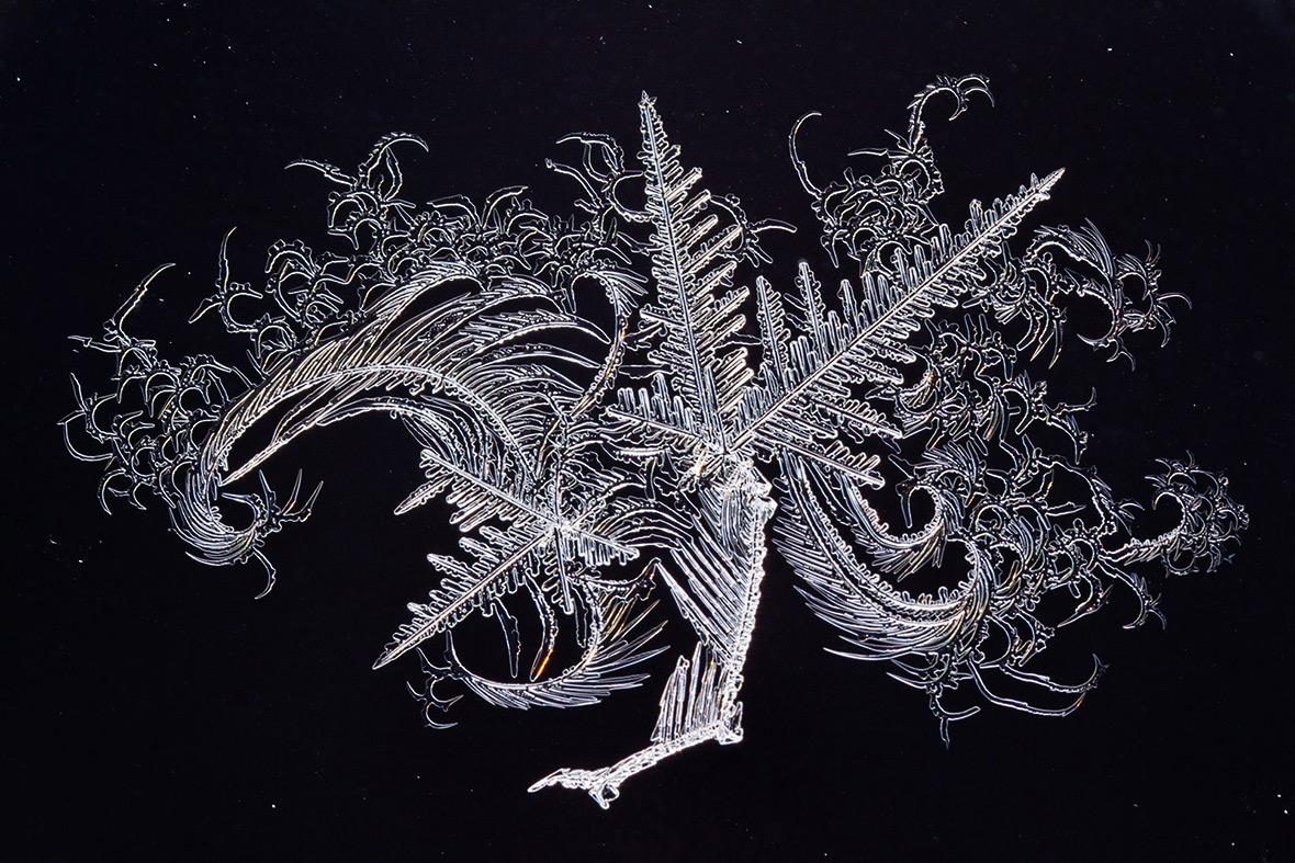 """Ледяное искусство на окне"". Автор: Маи Кирнманн (Maie Kirnmann)"